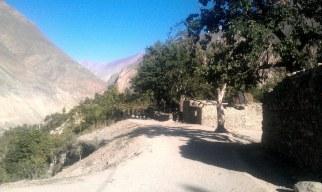 Ghulmet Nagar (2)