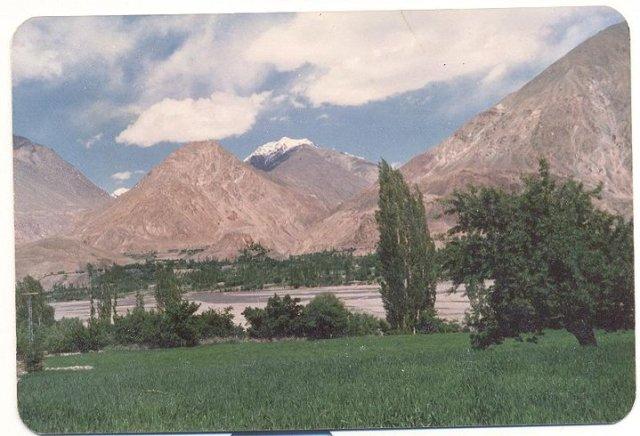 Mudori from sultanabad