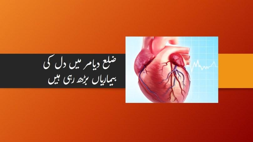ضلع دیامر میں دل کی بیماریوں میں تشویشناک حد تک اضافہ ہو رہا ہے