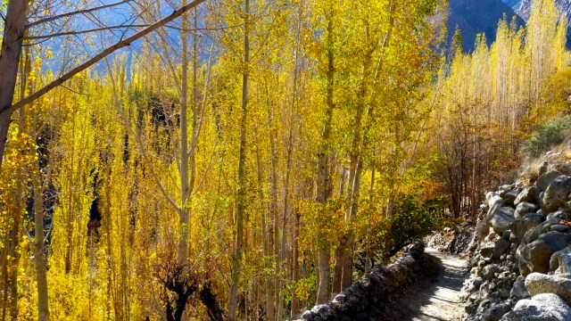 autumn-in-gojal-hunza-6