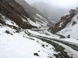 ضلع شگر میں برفباری نے تباہی مچا دی، گھر اور درخت گر گئے، سینکڑوں جانور دب گئے