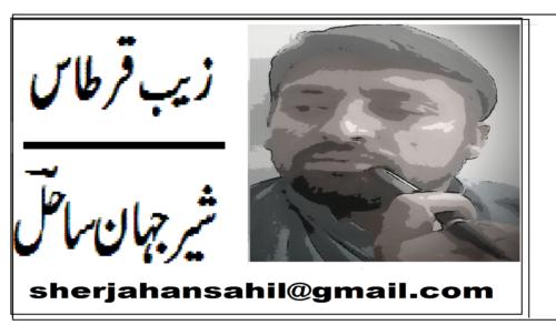 پاکستان پیپلز پارٹی چترال کا مستقبل