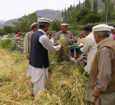 حیدر آباد ہنزہ میں گنانی کی رسومات روایتی انداز میں منائی گئیں