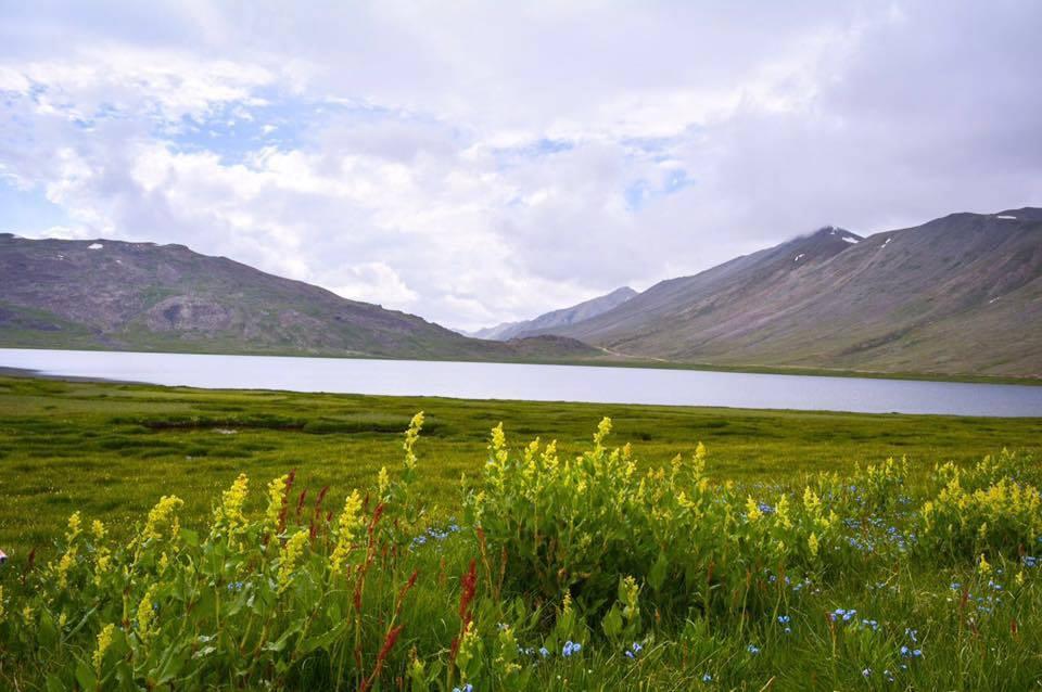 Sheosar-Lake-Deosai-Plain-Near-Skardu-Gilgit-baltistan