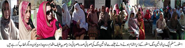 پاکستان مسلم لیگ ن خواتین ونگ کی جانب سے شعور آگاہی اور شمولیتی پروگرام کا انعقاد