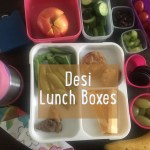 Desi Lunch Box Ideas for 30 Days