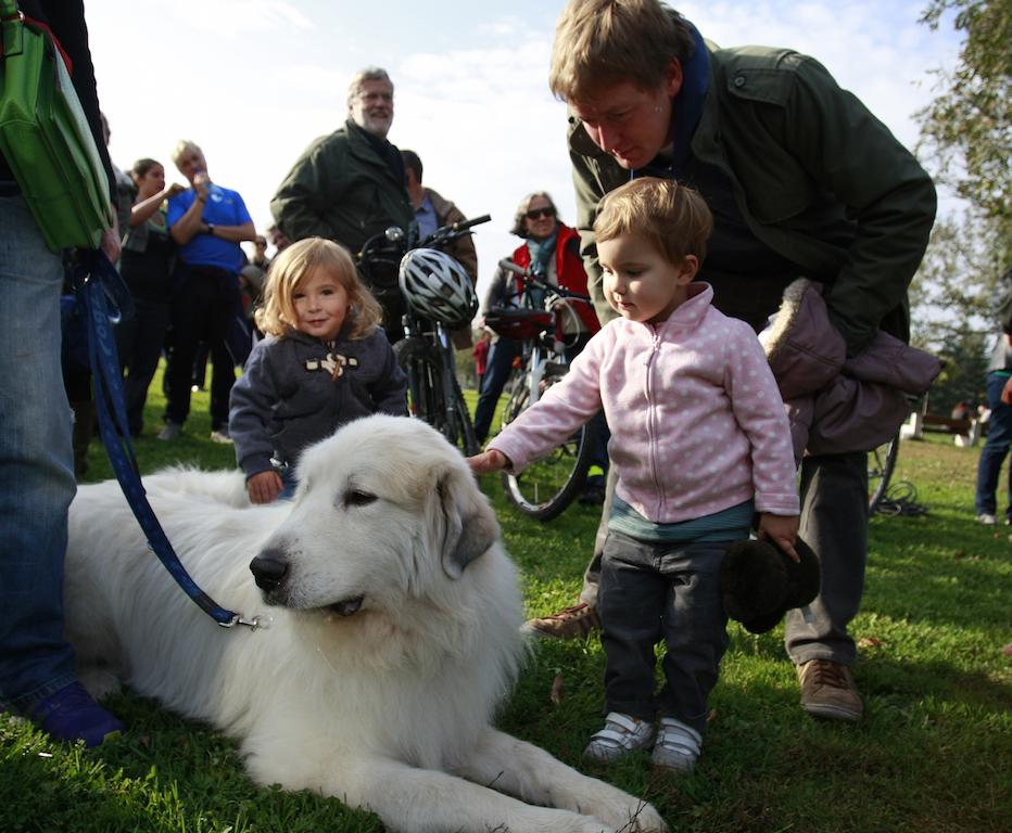 деца баща куче