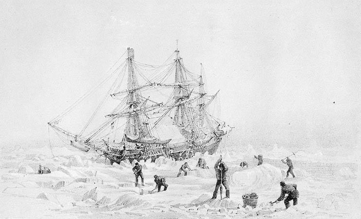 """""""Ужас"""", затиснат от леда, гравюра от 19 век. Източник: Wikipedia"""