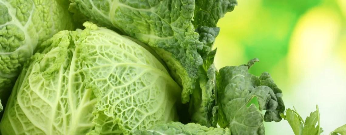 Wirsing ist ein beliebtes Wintergemüse, das aufgrund seines Bitterstoffgehaltes die Vitamin-B12-Aufnahme aus tierischen Lebensmitteln fördert.
