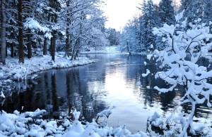 Flusslandschaft. Vitamin B12 im Dezember.