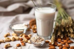 Frische veganische Alternativmilch in großem Glas. Gesunde vegetarische Küche Konzept. Mandeln, Cachou, Walnuss, Hafermehl, Kokosnuss
