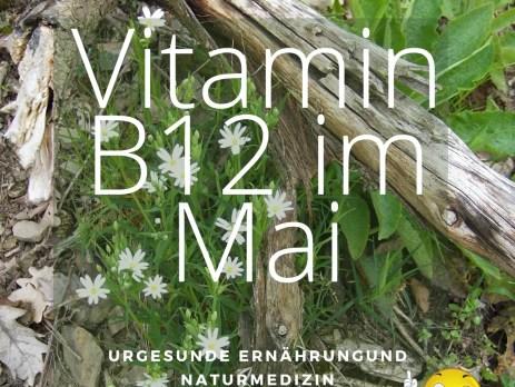 vegetarisch vegane Ernährung und Vitamin B12 studieren. Vitamin B12 im Mai.