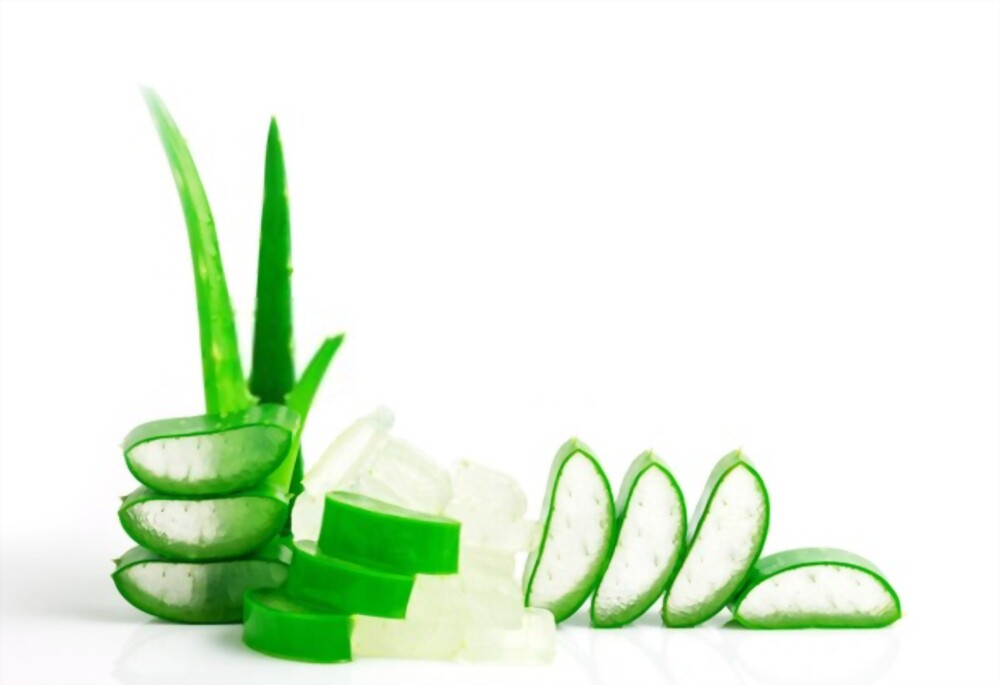 Rejuvenate With Aloe Vera Benefits Of Aloe Vera For Beauty And How To Use It