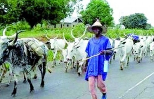 Delta: Four Killed By Suspected Fulani Herdsmen In  Urhobo Community