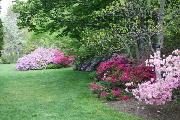 landscaping uri botanical gardens