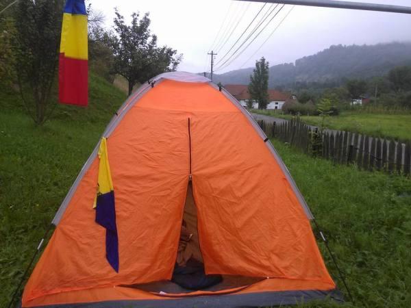 cortul