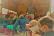 Photo of MP: वृद्ध भिक्षुकों के साथ मवेशियों की तरह व्यवहार करने के मामले में डिप्टी कमिश्नर निलंबित