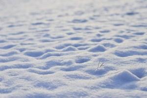 snow600083-1520438298-62.jpg