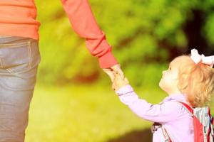 Successful Single Parents or Single Mother