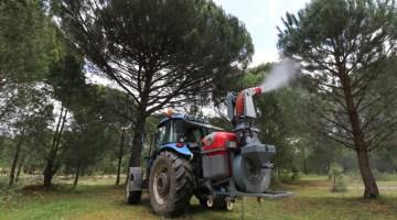 Çam Fıstığında Verim Düşüklüğünü Gidermek Üzere Uygulamalı Çalışma