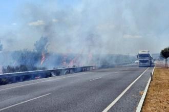 Sökedeki Sazlık Yangını Sürücülere Zor Anlar Yaşattı
