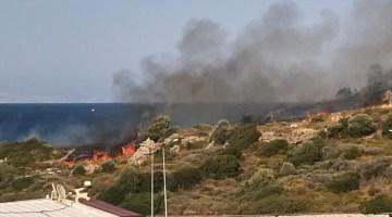 Alev Savaşcıları Urla ve diğer İlçelerde Yangınlara Müdahale Ediyor
