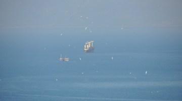 Kuşadası Körfezinde İki Kuru Yük Gemisi Çarpıştı