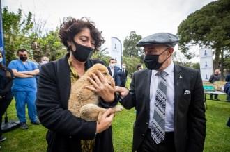 Kedi ve köpek sahiplenenlere sepetler Başkan Tunç Soyer'den