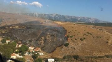 İzmirde Otluk Alanda Çıkan Yangın Kontrol Altında