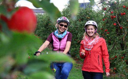 Die Genießer unter den Radfahrern sollten sich im Herbst die Urlaubsregion Altes Land am Elbstrom vornehmen.