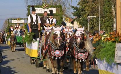 Die Leonhardiumzüge mit ihren prächtig geschmückten Rössern sind ein Publikumsmagnet im Passauer Land.
