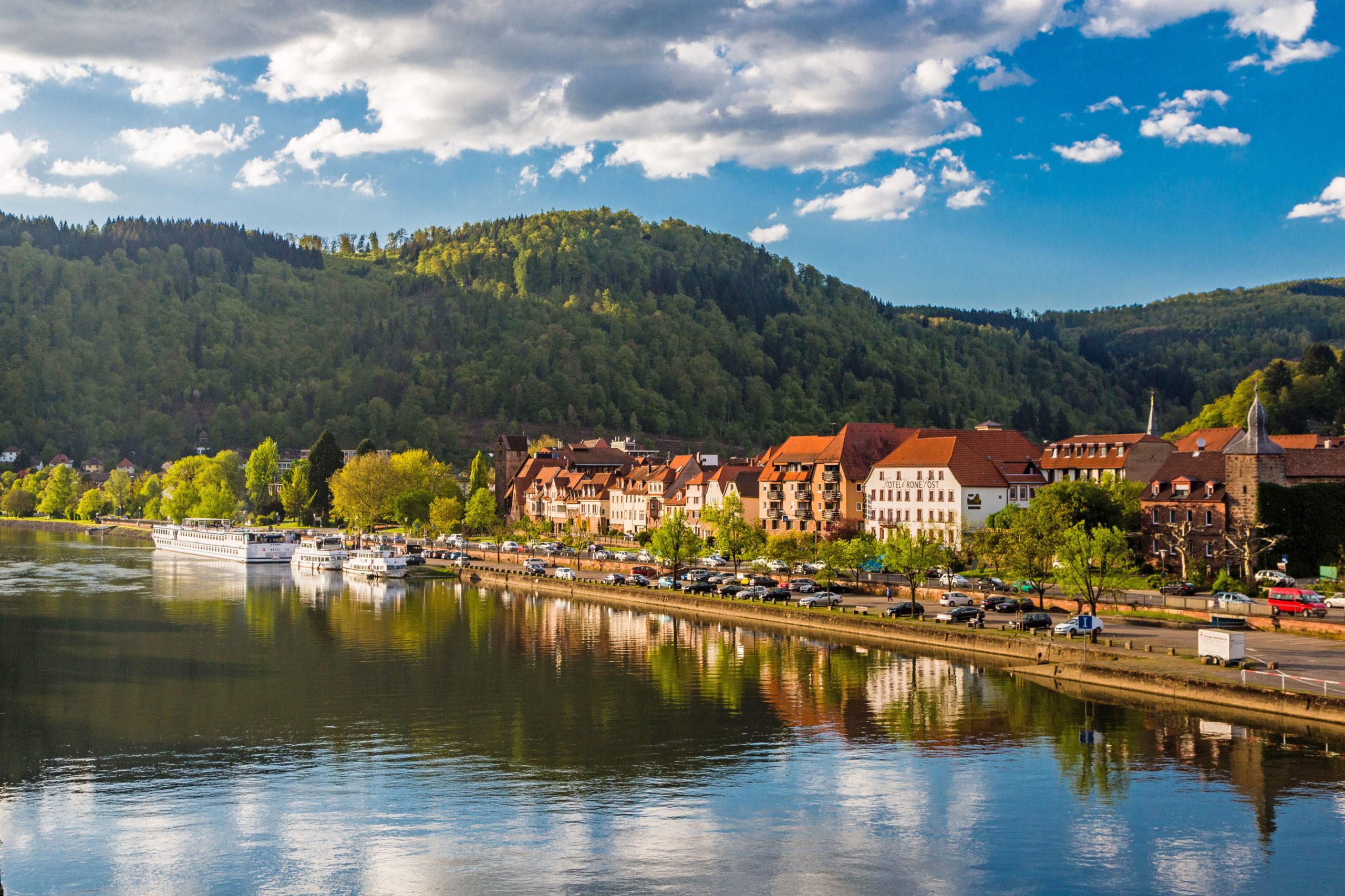 Blick auf Eberbach - Baden-Württembergs schönste Flussradwege