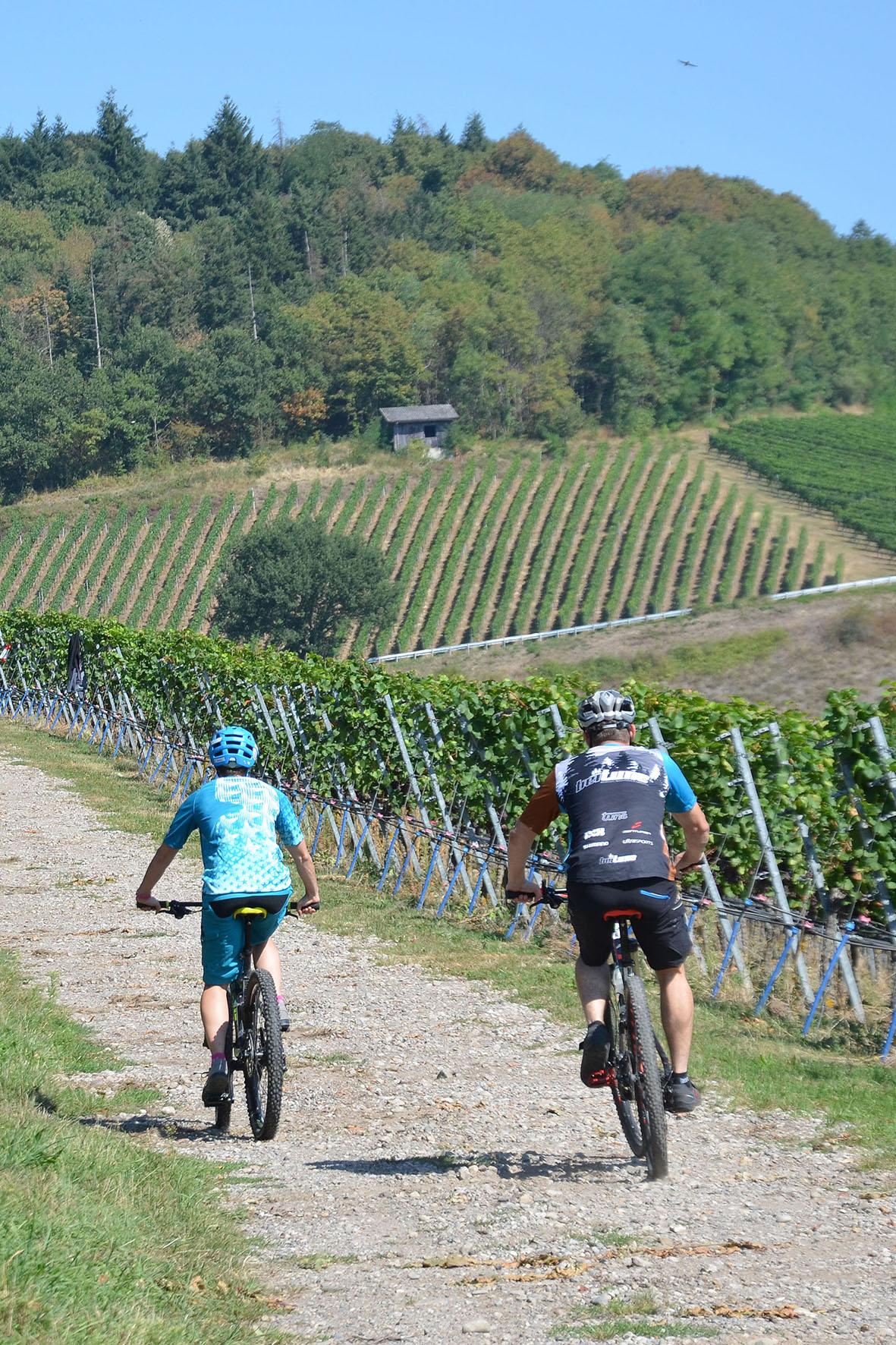 Radtour im Kaiserstuhl