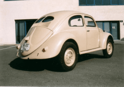 beetle-2-min