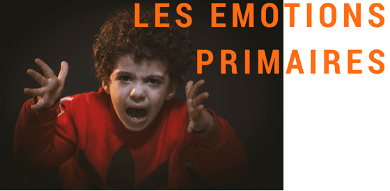 LES EMOTIONS : Emotions primaires
