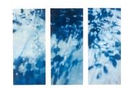 Ursula Kolbe - Concerning Landscape 'Concerning Landscape'. Oil on Canvas