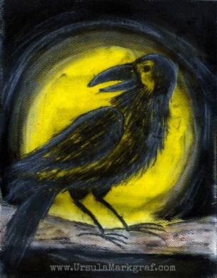 Magical crow