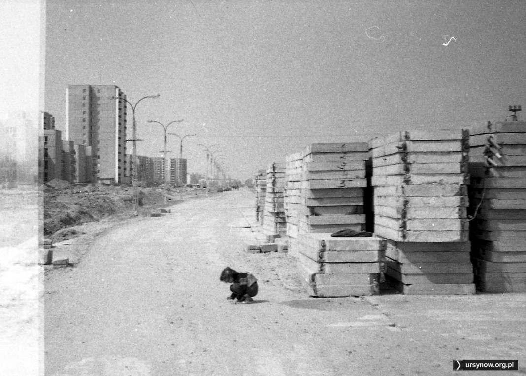 Wielkie płyty, z których powstanie tymczasowa (czyli na 25 lat) jezdnia ulicy Rosoła. Widok z wysokości Mandarynki. Fot. Andrzej Kubik