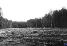 Teren katastrofy Iła-62 w Lesie Kabackim. Jeszcze nawet nie do końca wyrównano ziemię. Fot. Andrzej Matuszewski