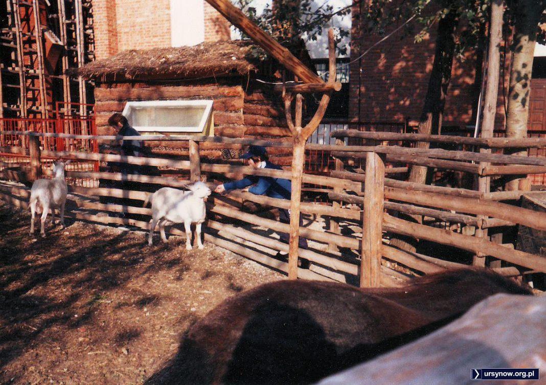 Zagroda dla zwierząt przy kościele Św. Tomasza. Spłonęła w 2008 roku. Fot. Magda Cendrowska
