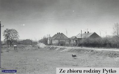 Maj 1976, Leopold Pytko wraca nad brzeg Smródki i fotografuje ostatnie chałupy przy ulicy Tarniny. Za nimi już dźwigi wznoszą Służew nad Dolinką (porównajcie ze zdjęciem z 1967 r.)