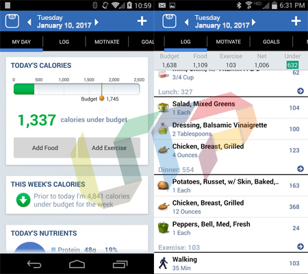 Lose It! Best Android Fitness Apps for Foodies
