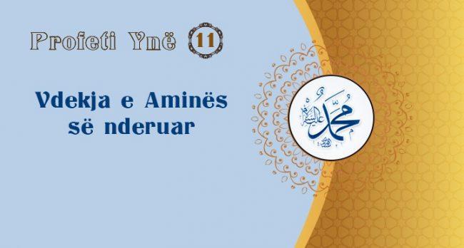 Profeti Ynë (11) – Vdekja e Aminës së nderuar