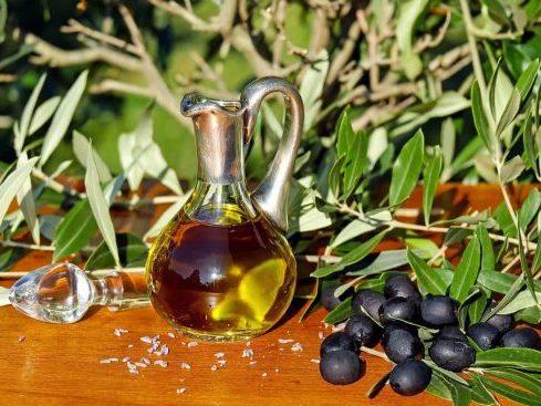 dobitë e vajit të ullirit