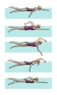 selain untuk kesehatan berenang juga bisa untuk olahraga macam macam gaya renang bebas