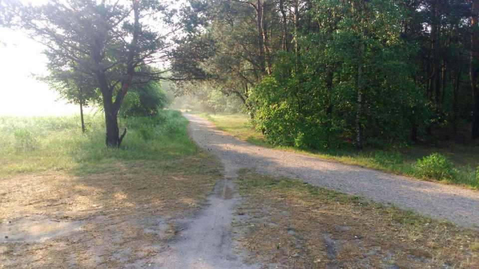 uroczysko lublinek, czerwiec, leśna ścieżka