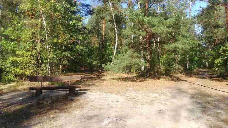 Uroczysko Lublinek jesienią, kolory jesieni na drzewach, leśne ścieżki, ławka - miejsce odpoczynku