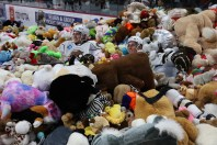 hershey-teddy-bear-toss-2019x - 3