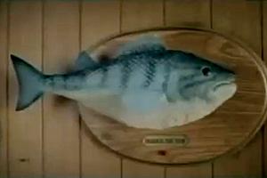 74343 fish
