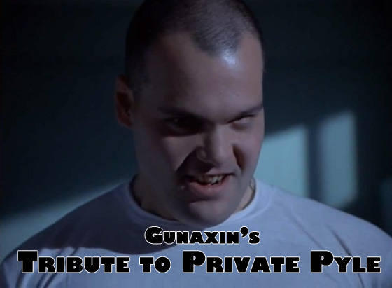 private pyle feature